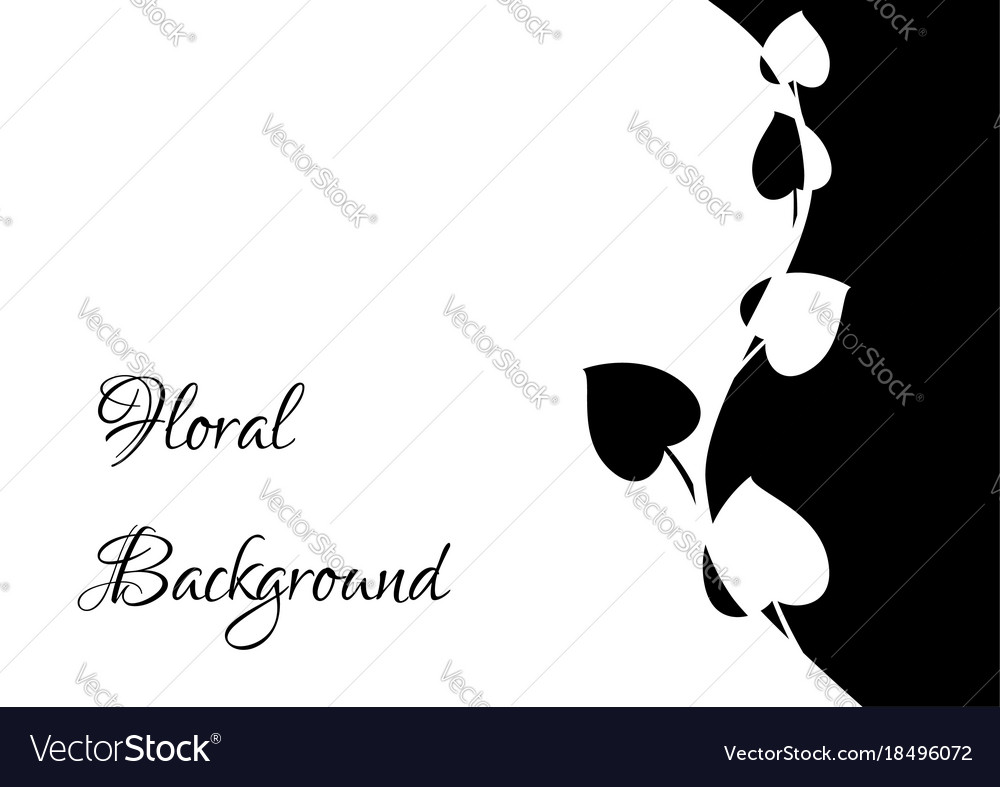 Black and white floral frame flower background vector image mightylinksfo