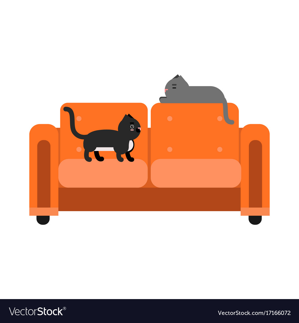 Cute Black And Grey Cats Sitting On An Orange Sofa Vector Image