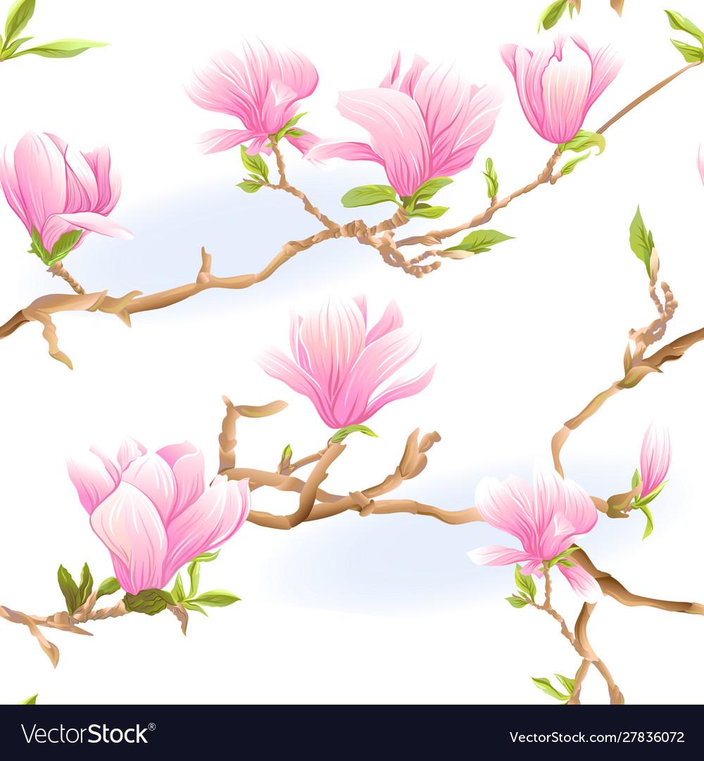 Magnolia Tree Branch Royalty Free Vector Image