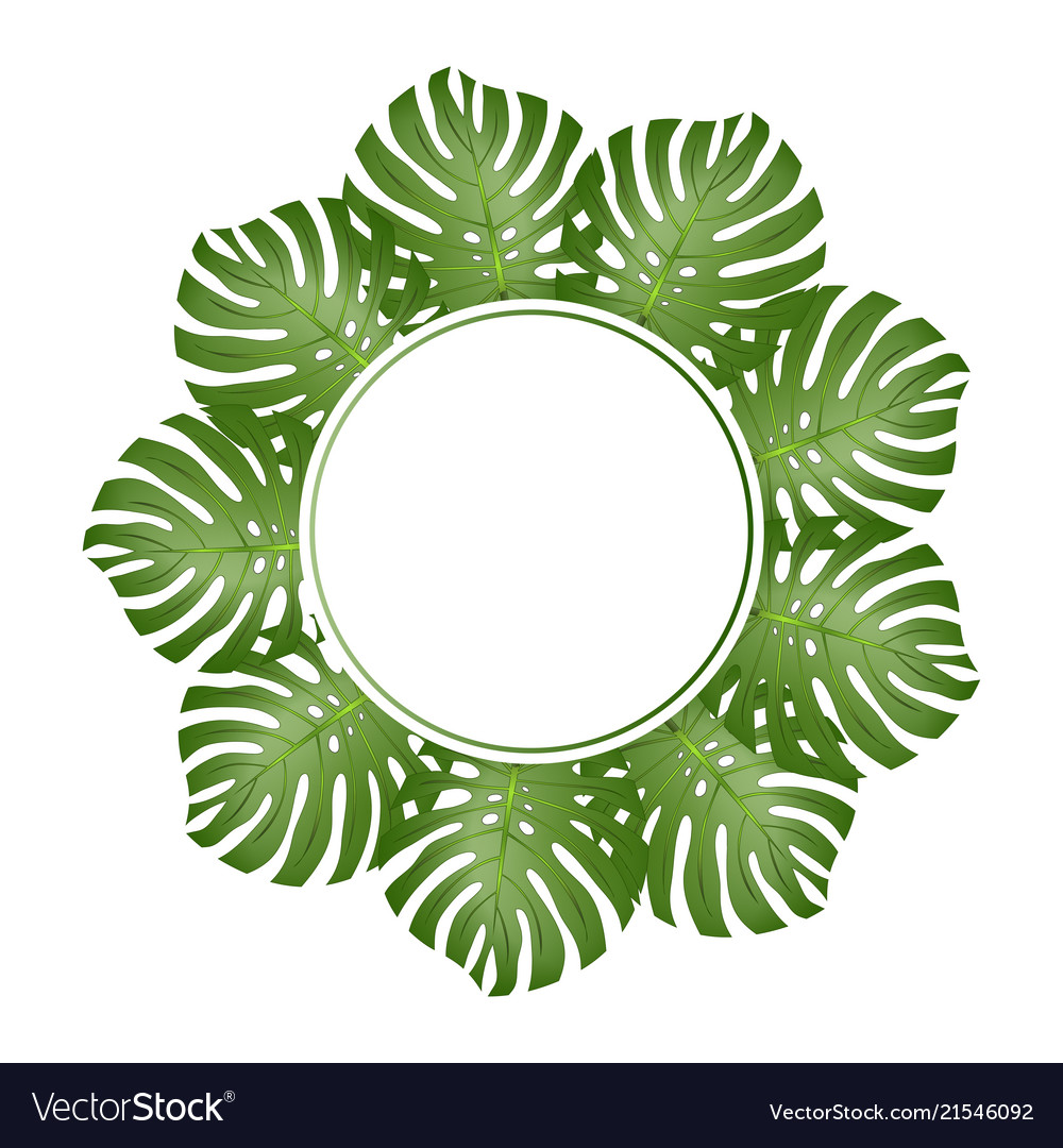 Philodendron monstera leaf banner wreath