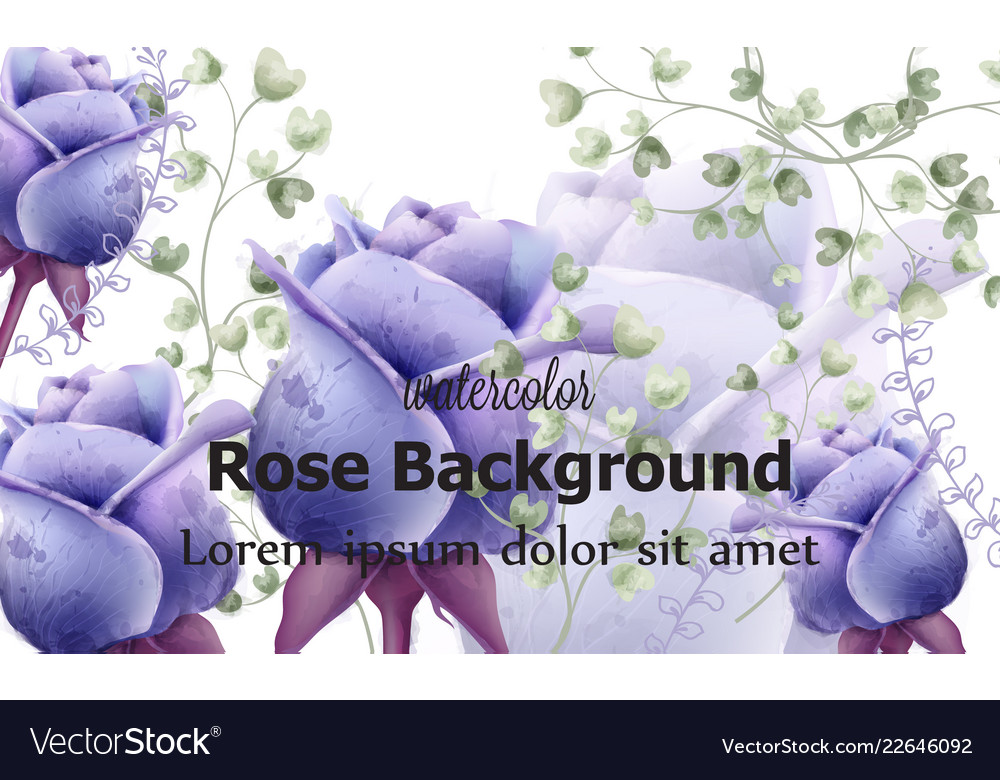 Rose flowers card background watercolor