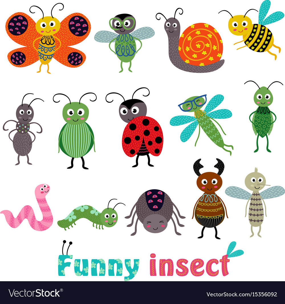 Set isolated with funny insect vector