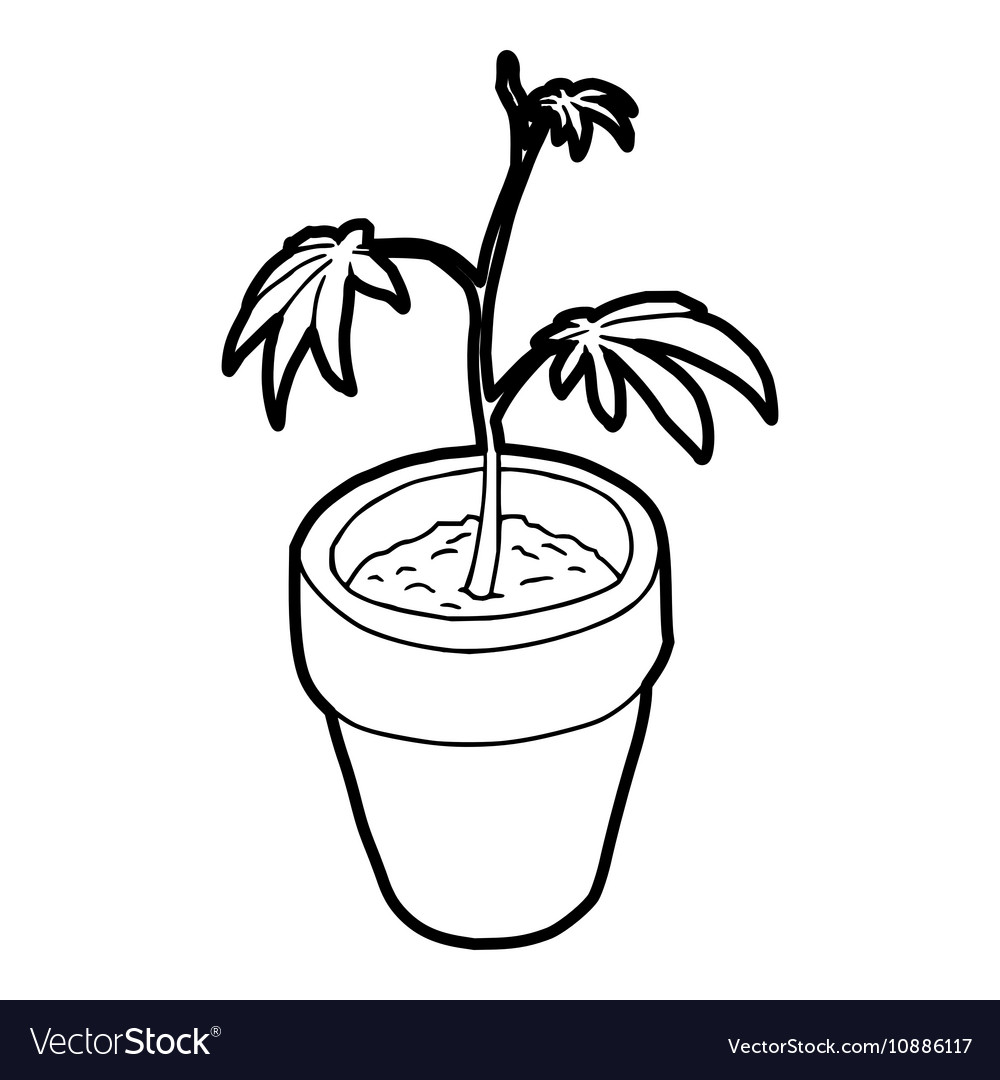 Cannabis plant icon outline style