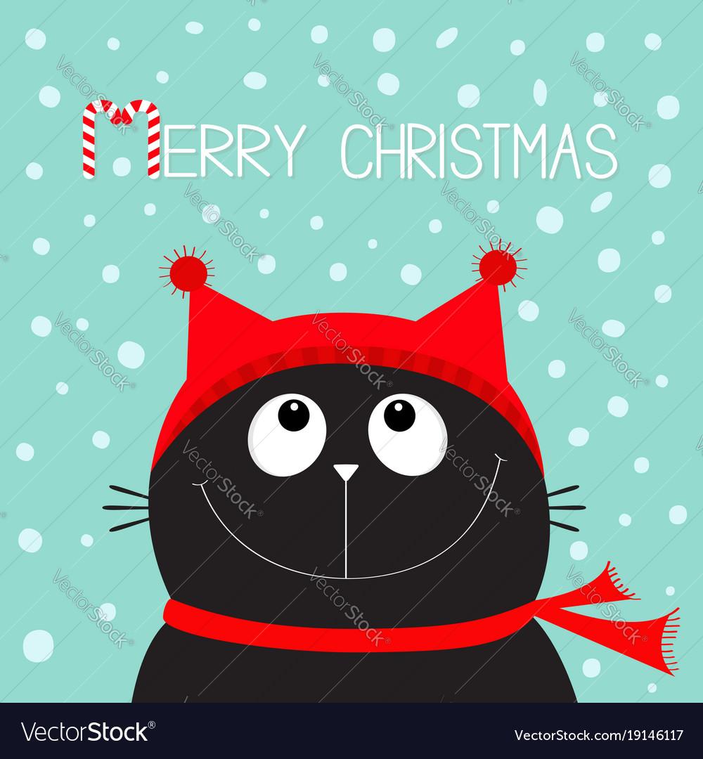 Kitten Christmas.Merry Christmas Candy Cane Text Black Cat Kitten