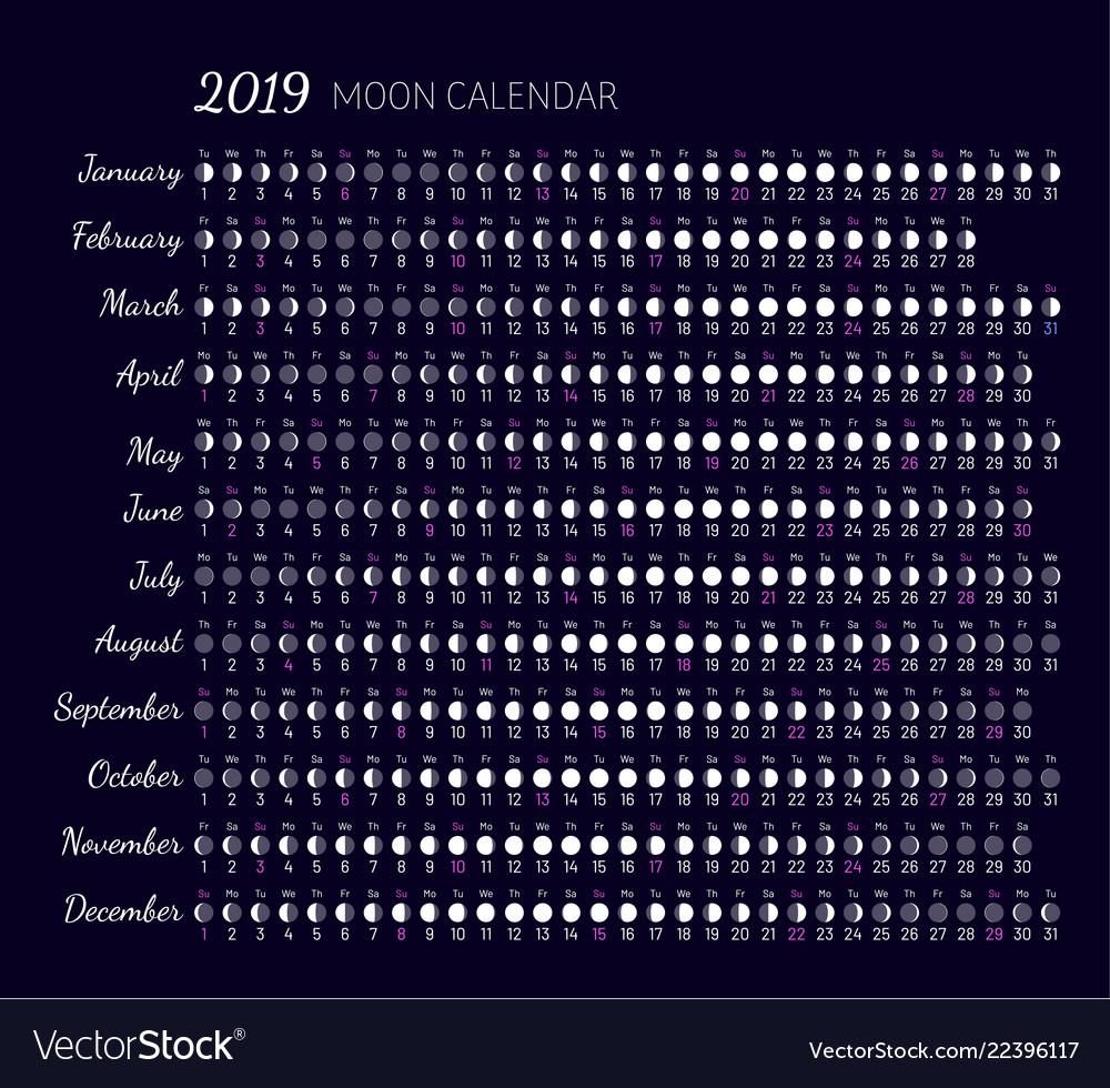 Moon illumination and moon age vector image
