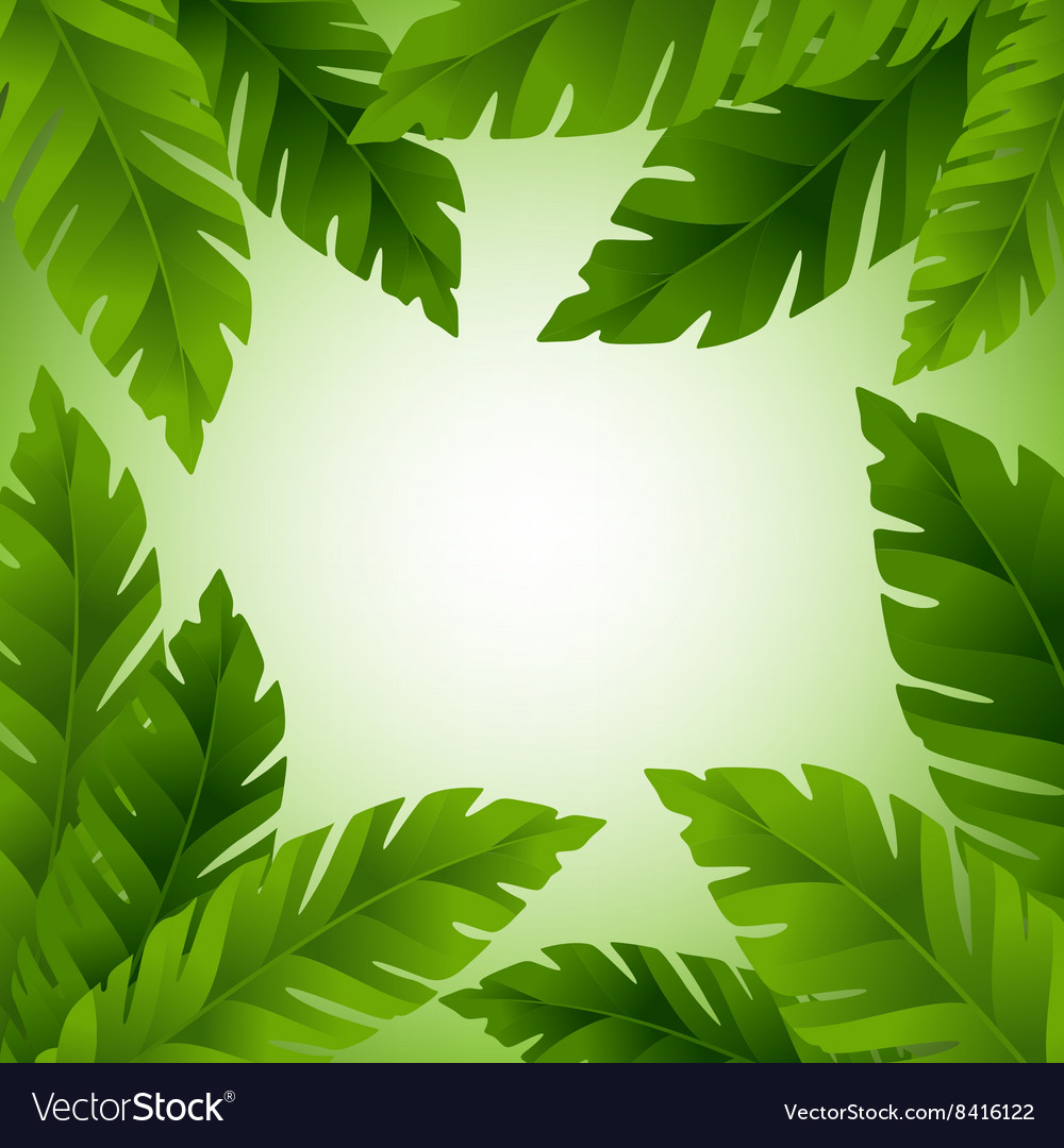 Banana leaves frame with copy space