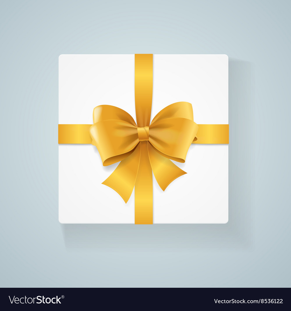 Box and Bow vector image