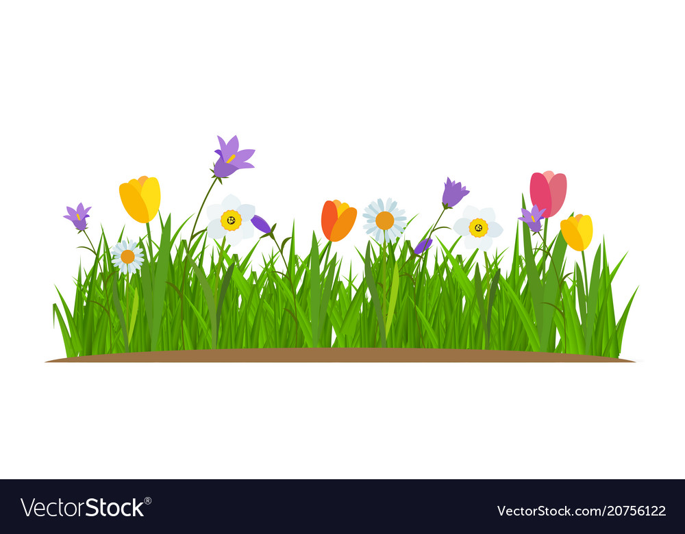 grass and flowers border. Modren Flowers And Grass Flowers Border E