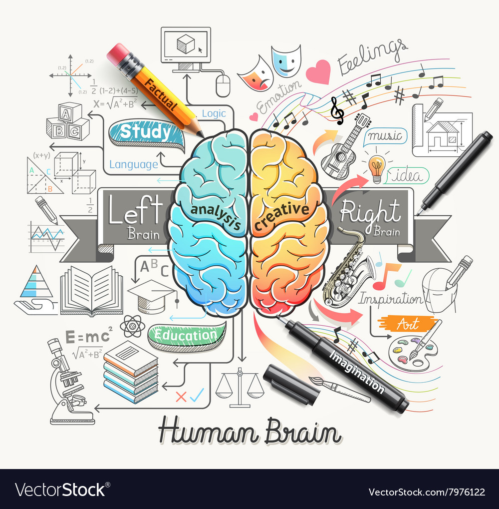 Human brain diagram doodles icons style