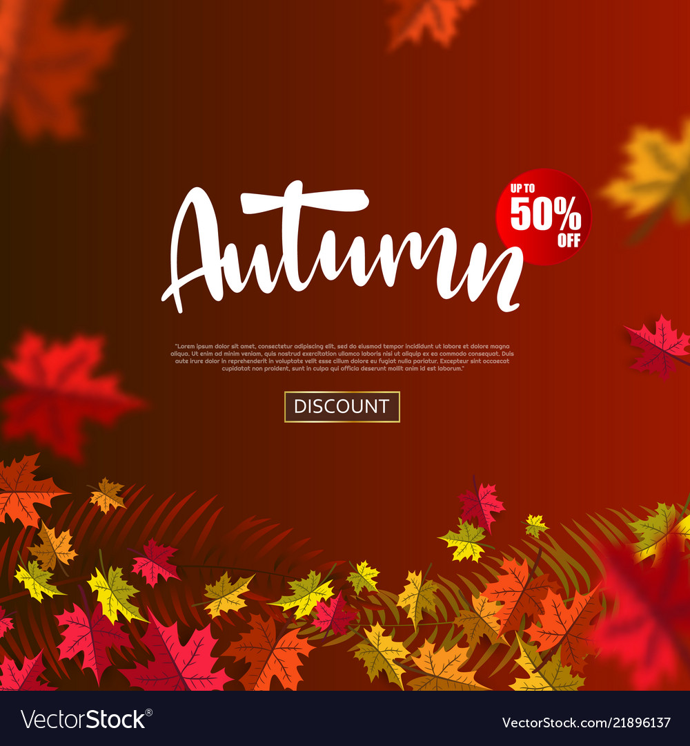 Autumn sale background layout falling leaves with