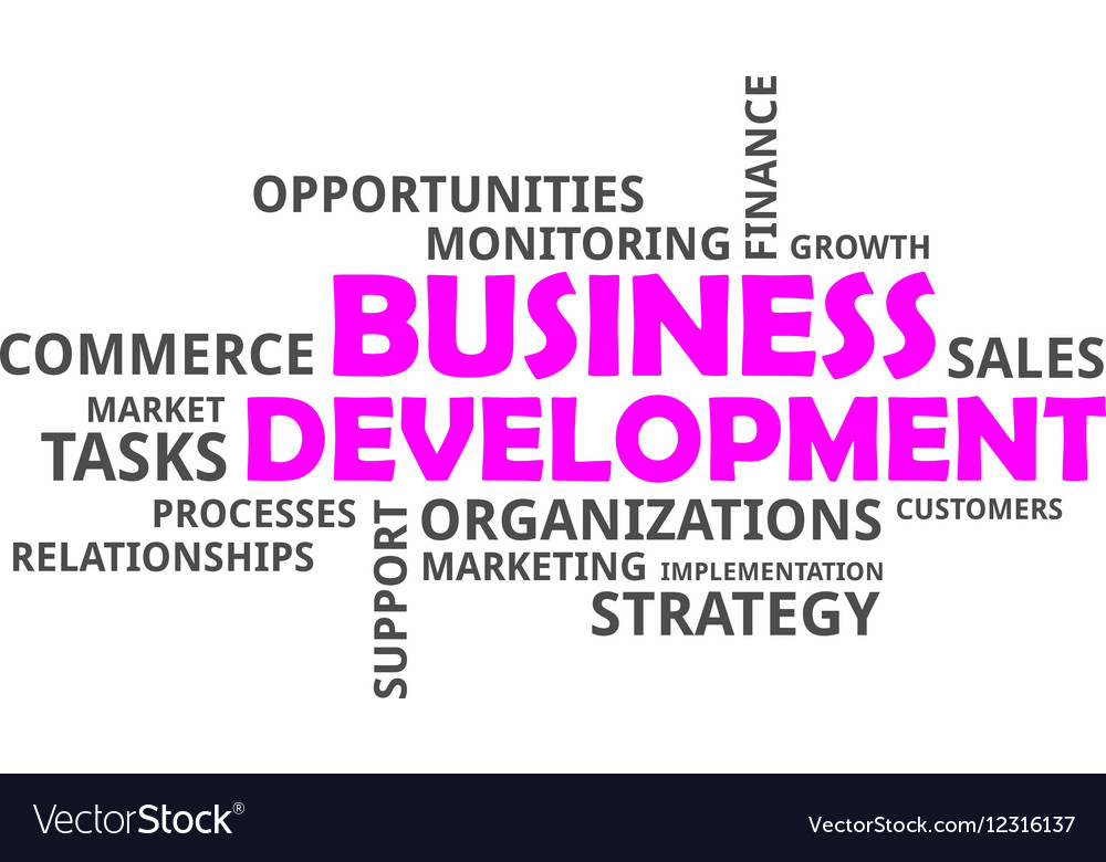 Word cloud business development vector image