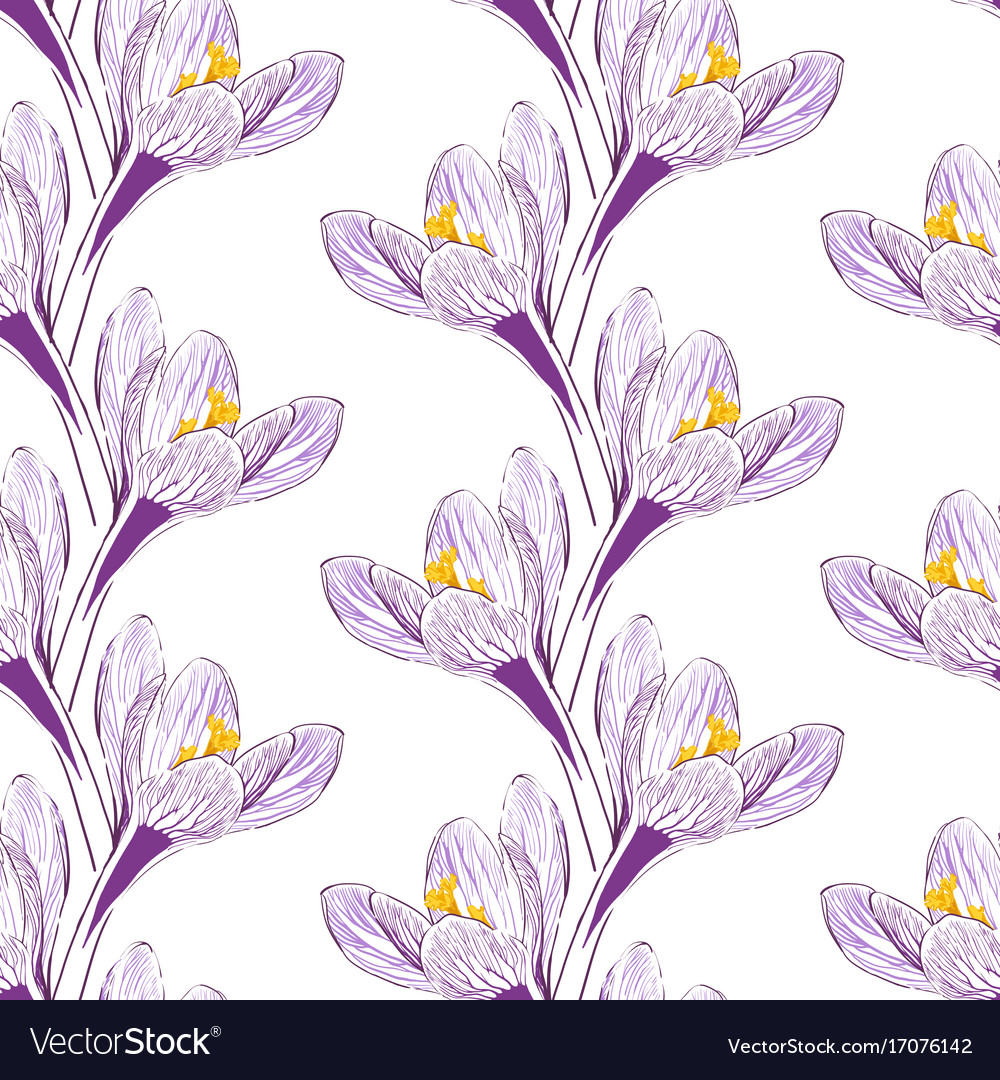 Seamless pattern with saffron vector image