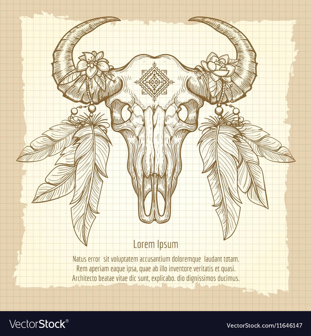 Hand drawn buffalo skull vintage poster