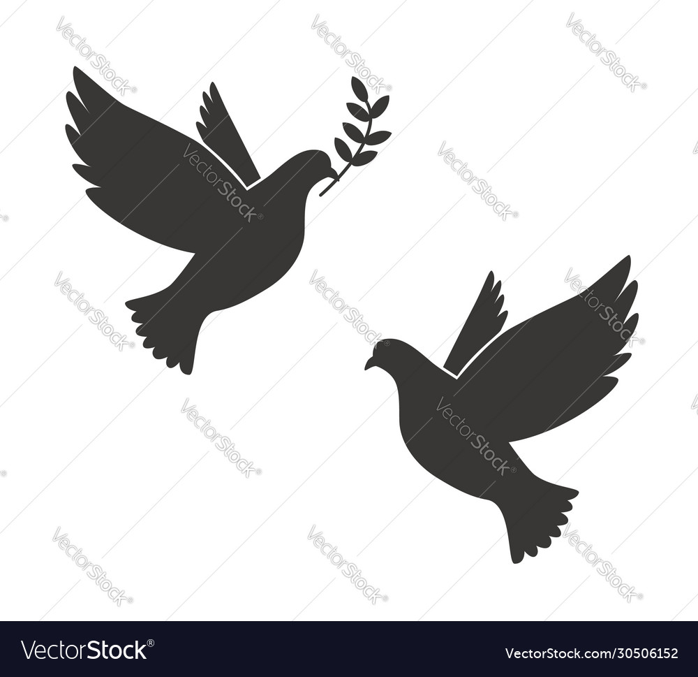 Black Silhouette Flying Dove With Olive Twig Vector Image To get more templates about posters,flyers,brochures,card,mockup,logo,video,sound,ppt,word,please visit pikbest.com. vectorstock