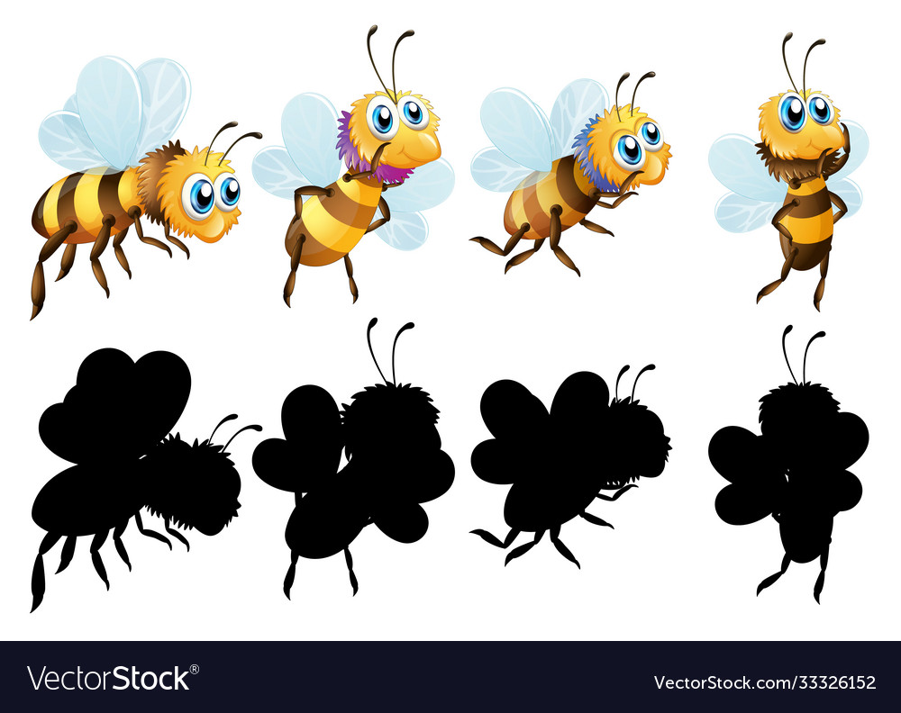 Set insect cartoon character and its