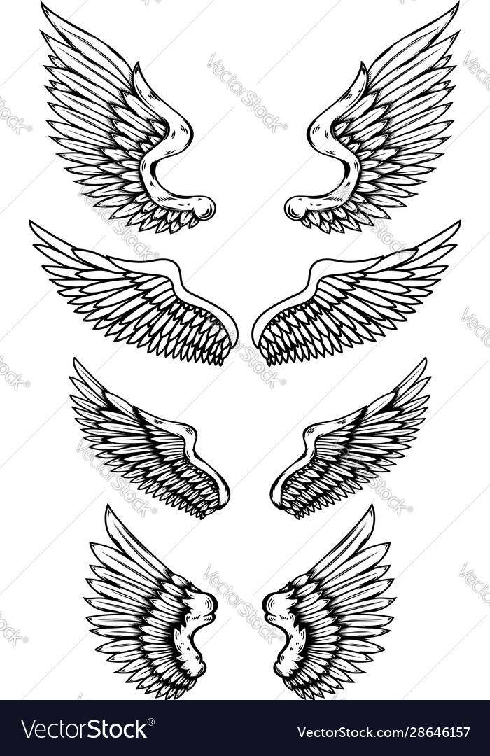 Set wings in tattoo style isolated on white