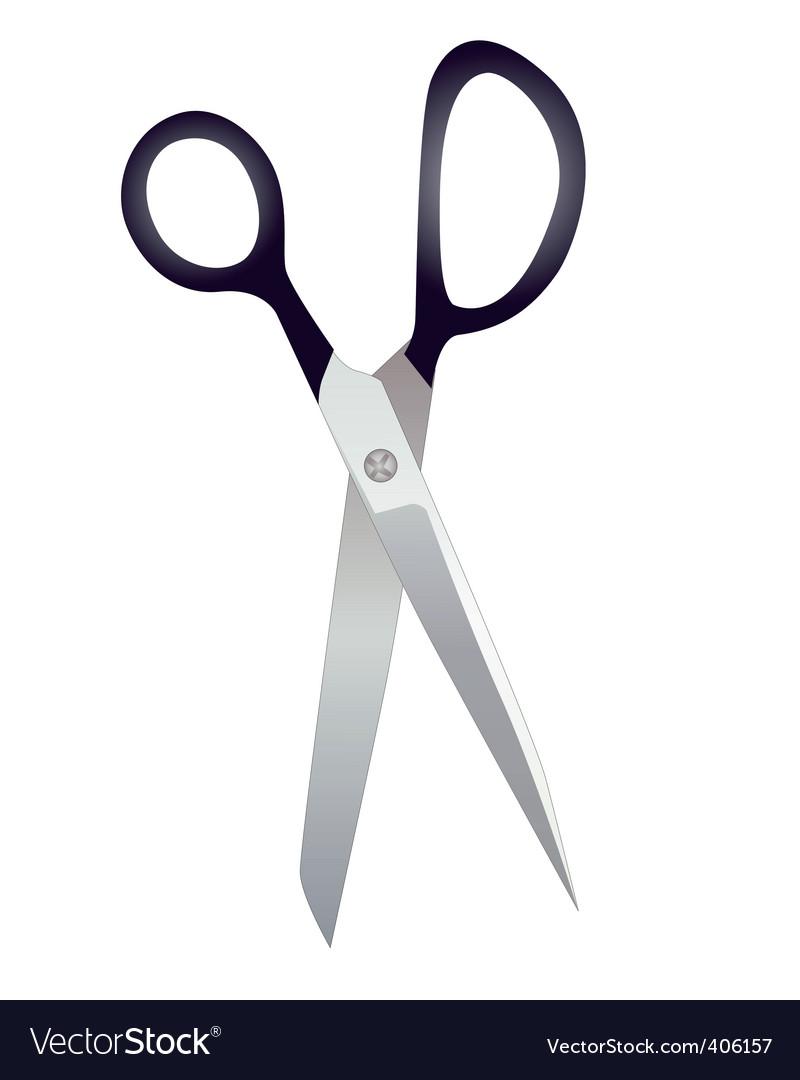 Tailor scissors vector image