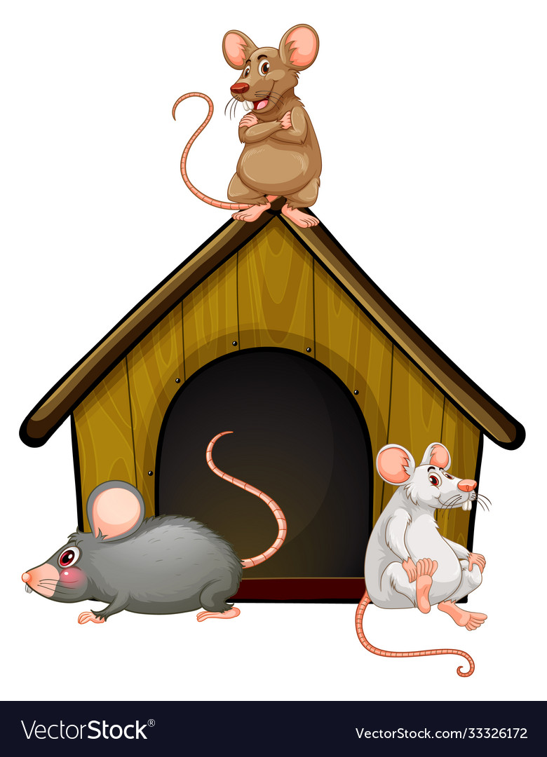 Group cute mouses with little house isolated