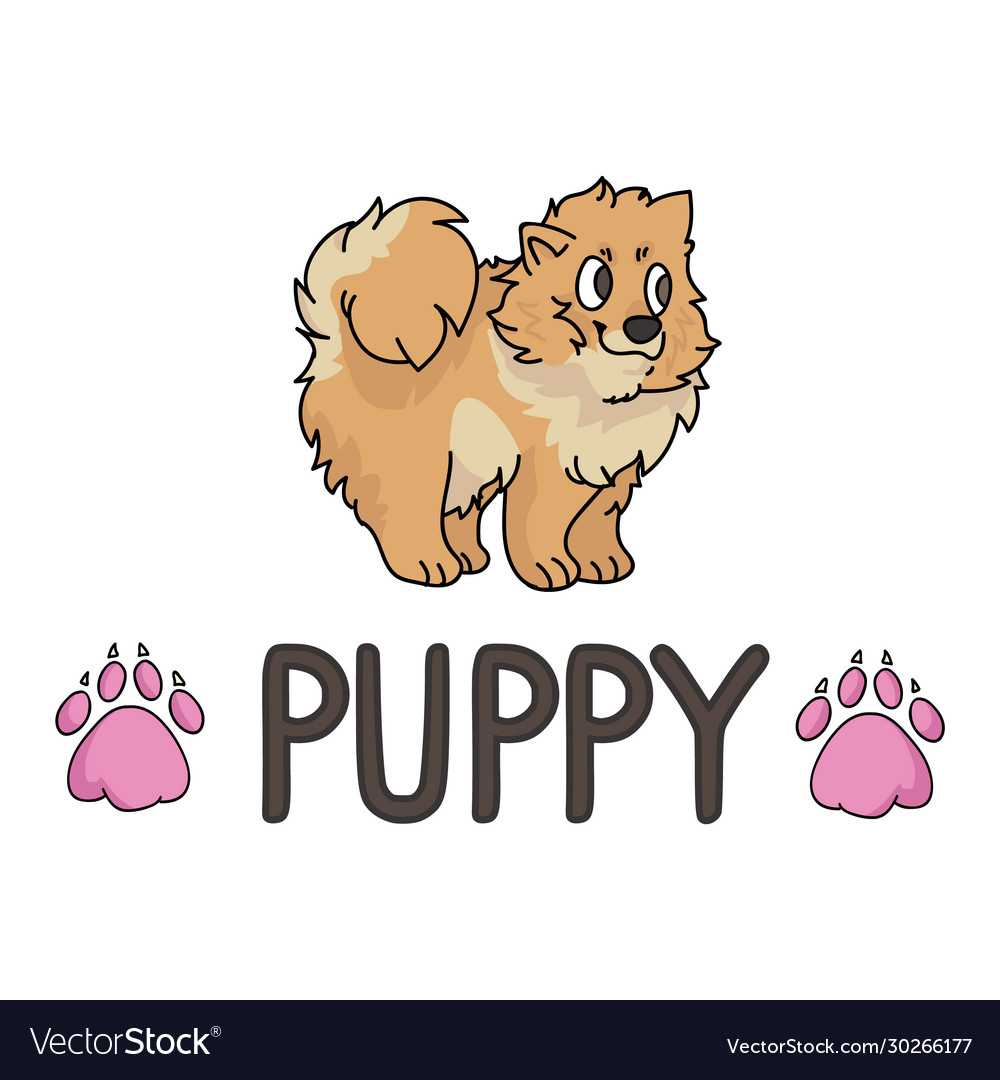Cute Cartoon Pomeranian Puppy With Text Word And Vector Image