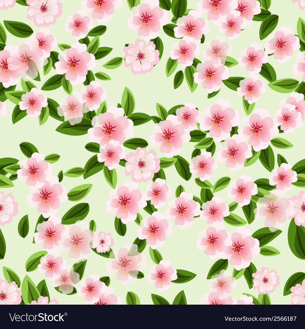 Seamless texture of blossom cherry