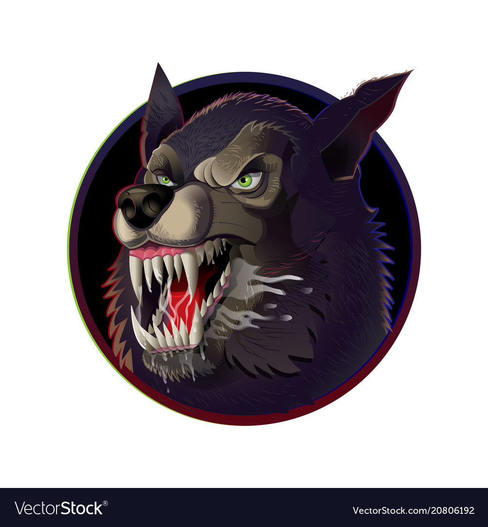Angry wild wolf