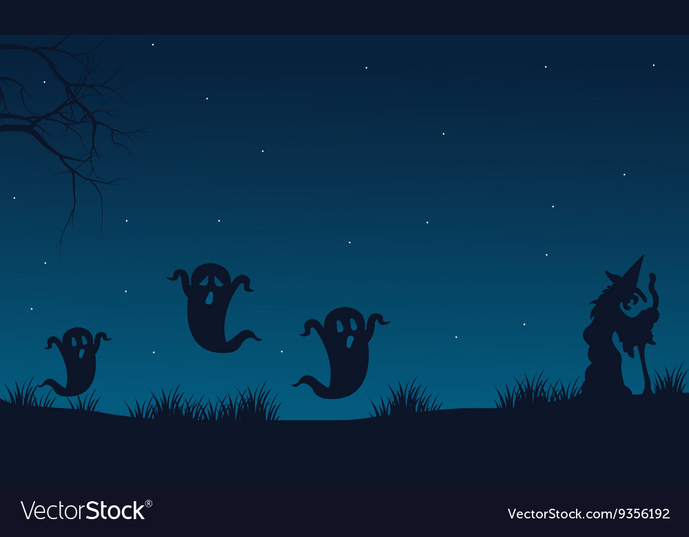 Silhouette of Halloween ghost and witch vector image
