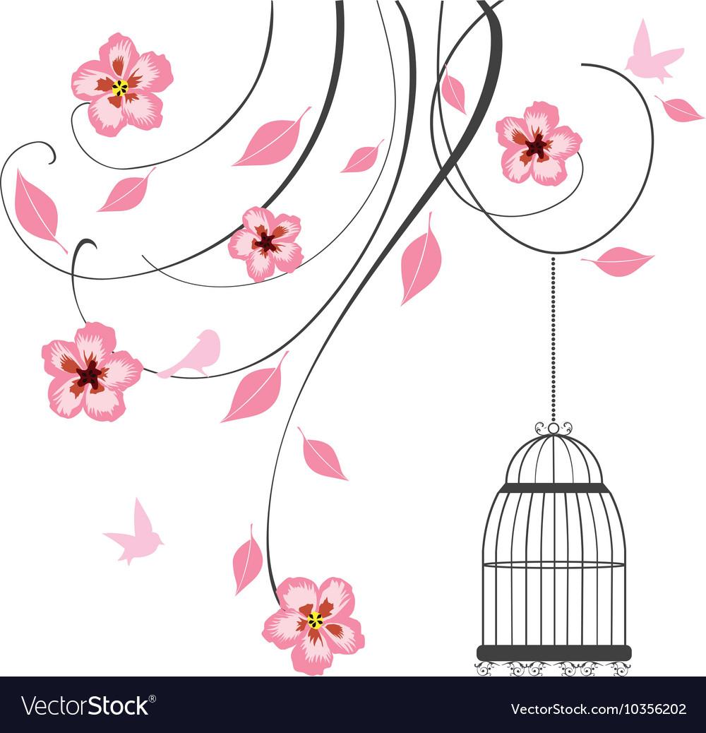Cage swirls