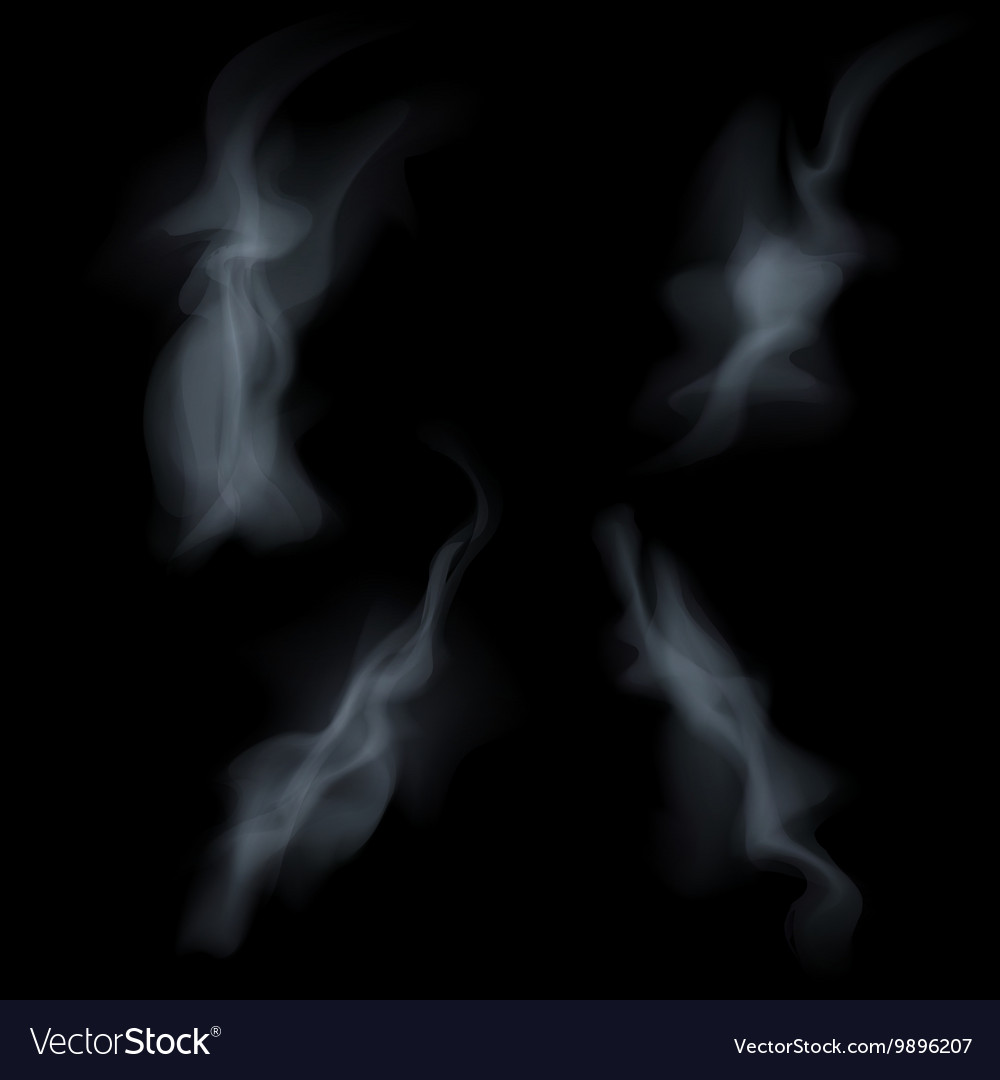 Smoke isolated on white background vector image