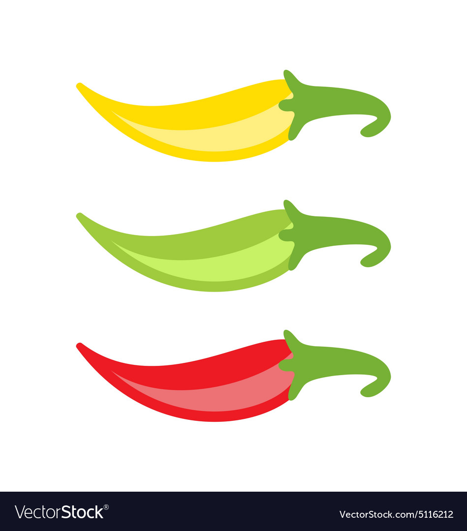 Colorful Chilli Peppers Isolated