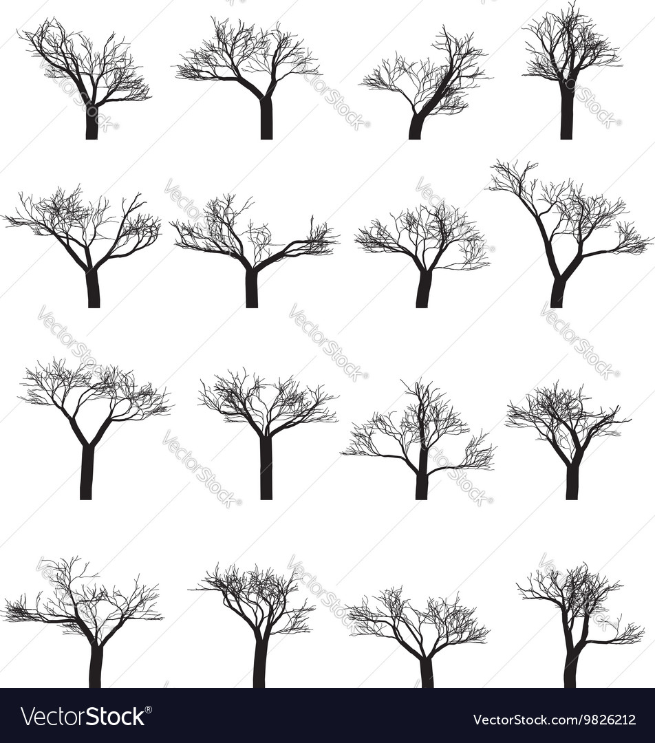 Set of sixteen silhouettes of trees vector image