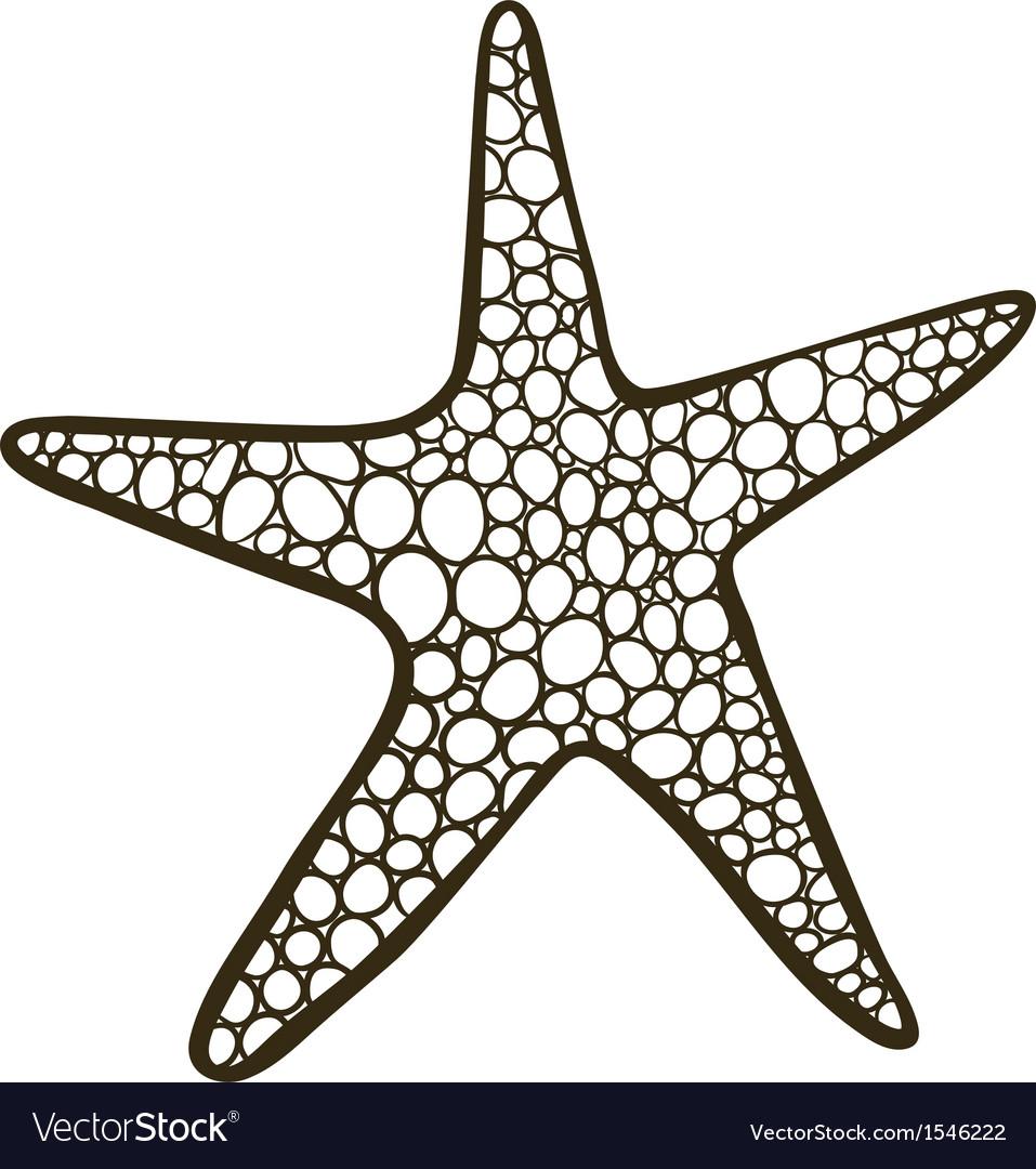 starfish royalty free vector image vectorstock rh vectorstock com starfish vector file starfish vector art
