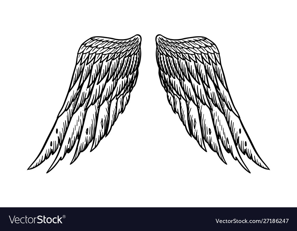 Angel wing in vintage style template for tattoo