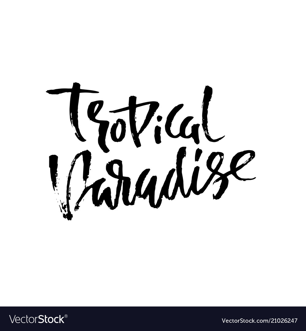 Tropical paradise hand drawn lettering isolated