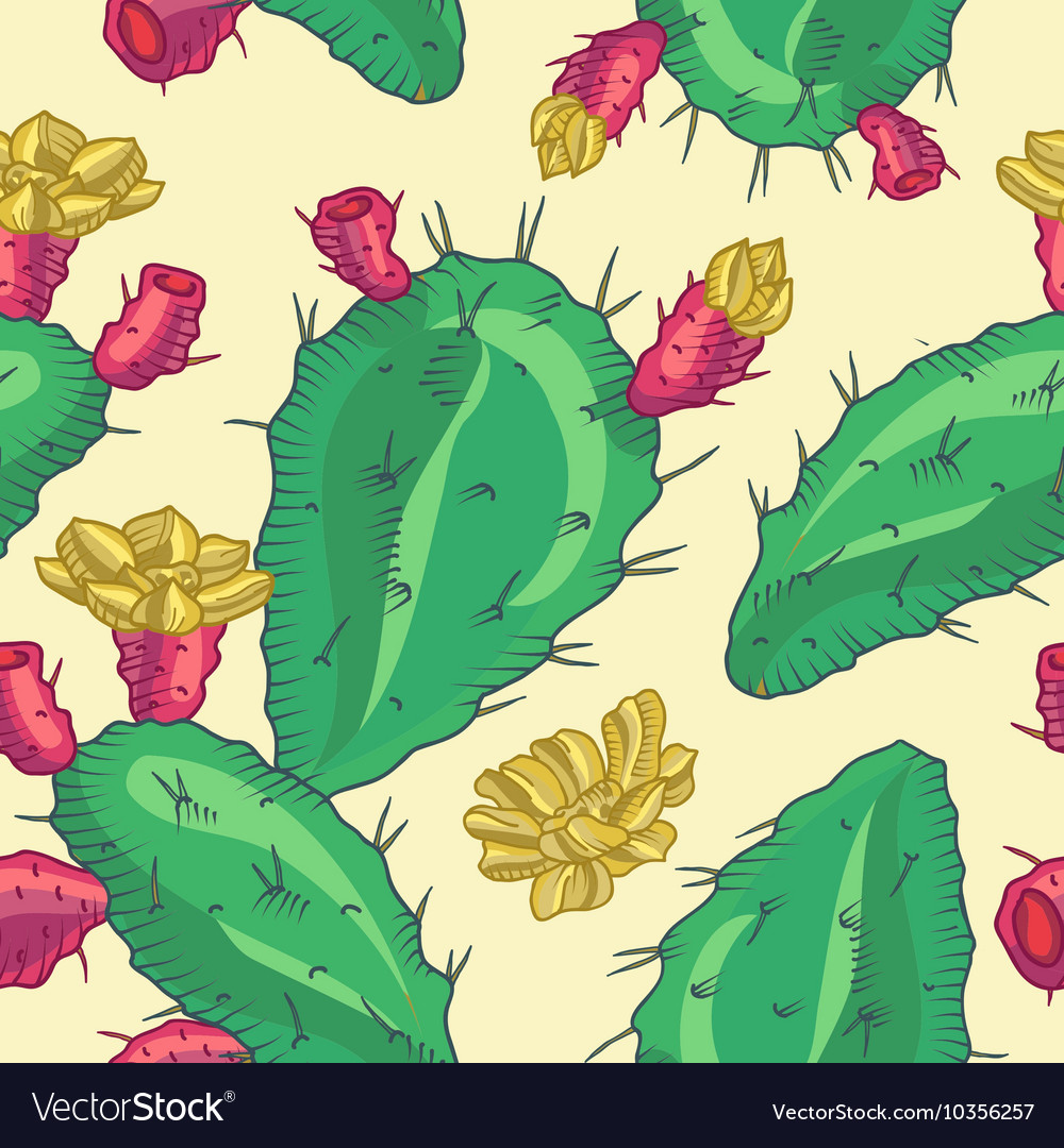 Cactus flower seamless pattern vector image