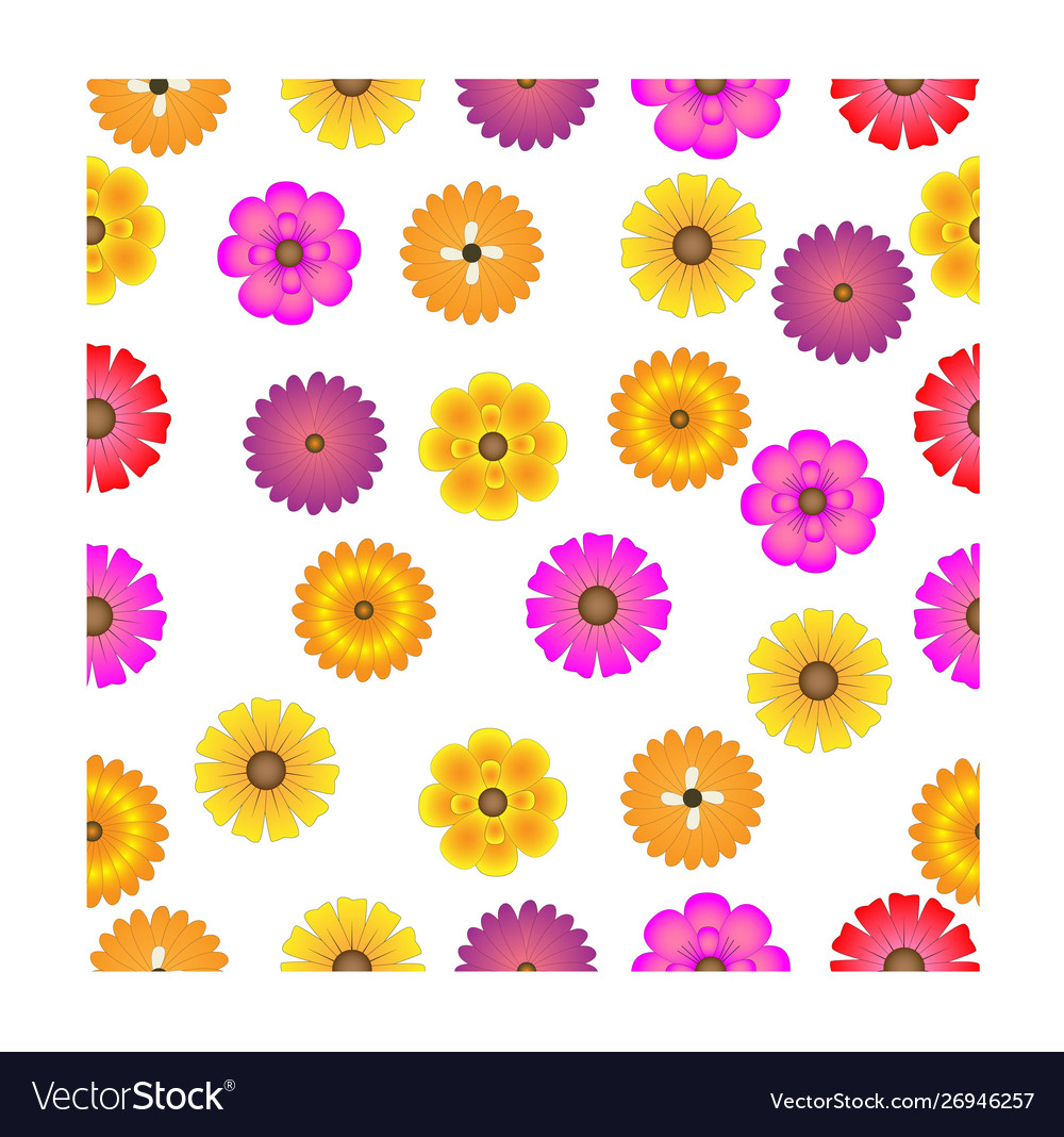 Colorful flower seamless pattern design on white