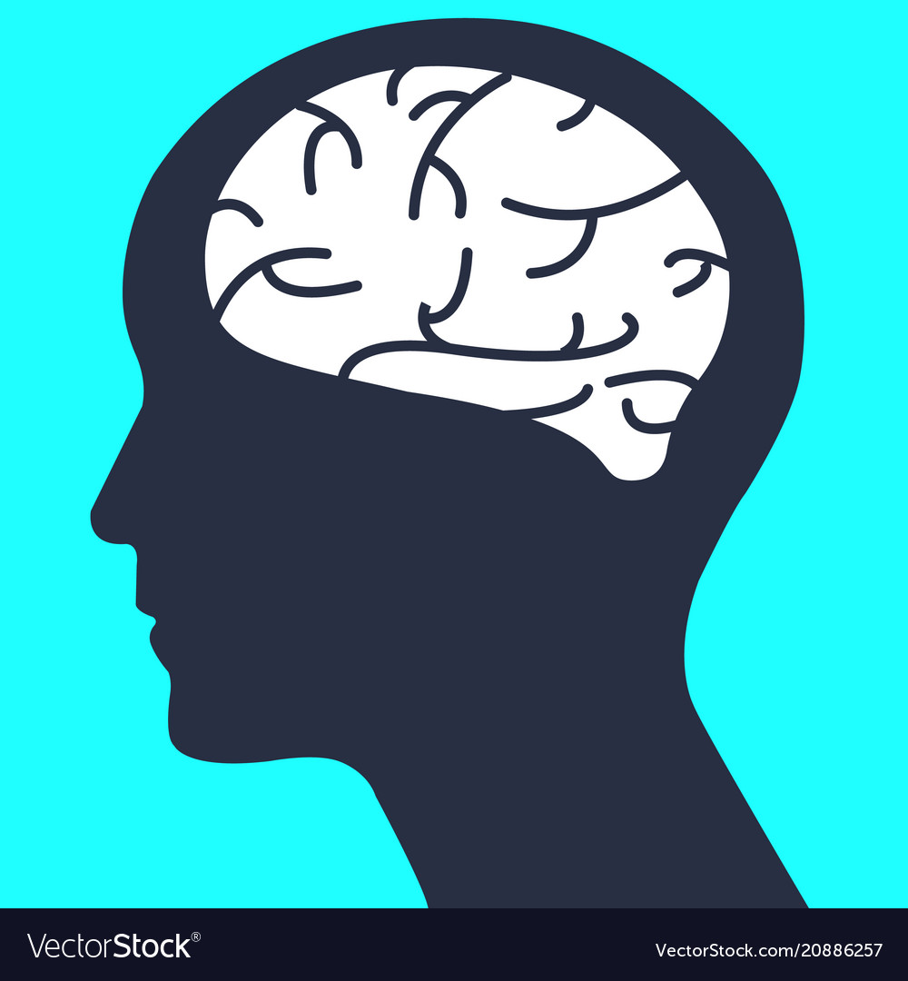 Silhouette human head with simple brain human vector image