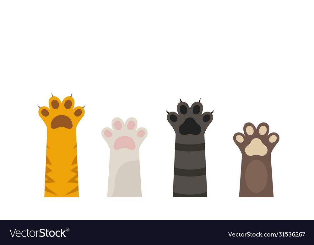 Pet paw print icon dog or cat foot black
