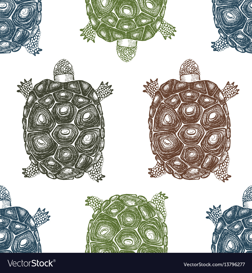 Seamless pattern with hand drawn turtles
