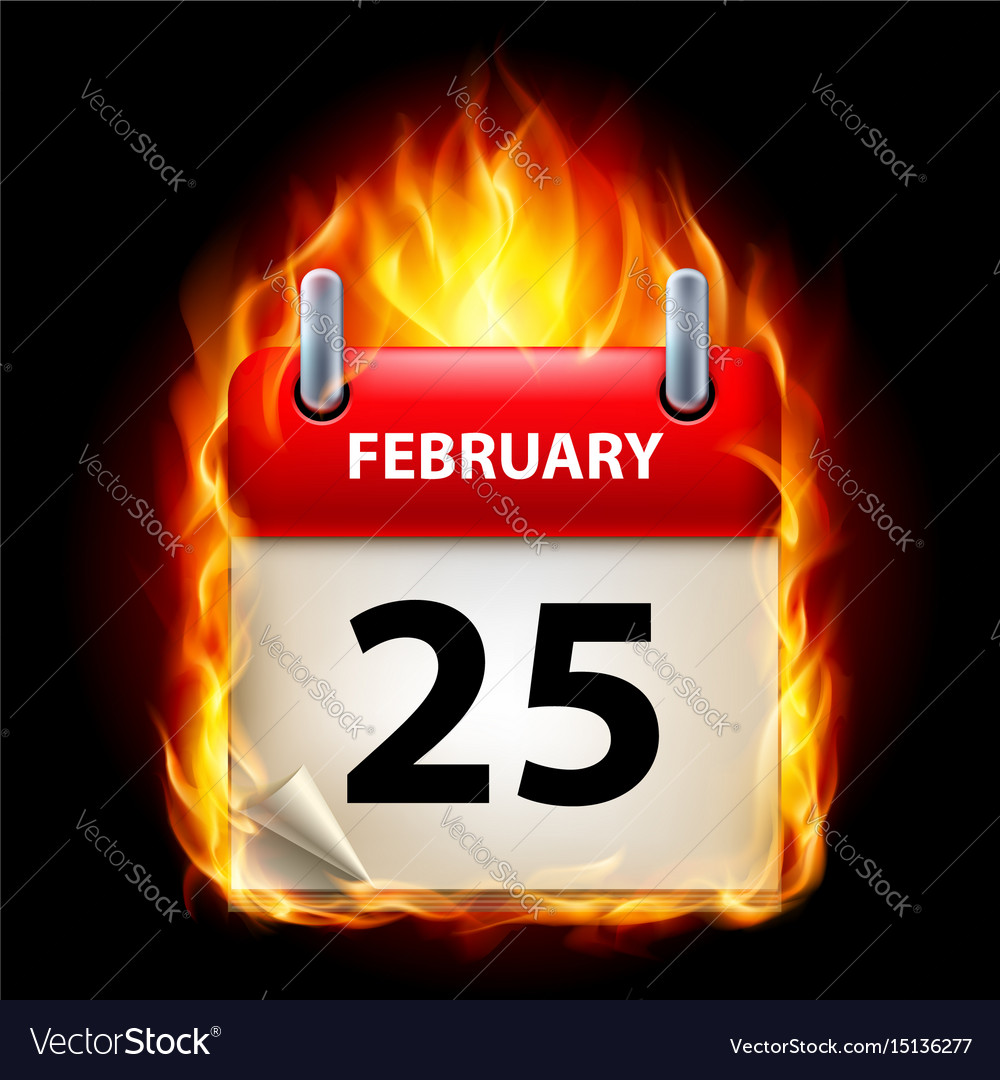Twenty-fifth february in calendar burning icon on vector image