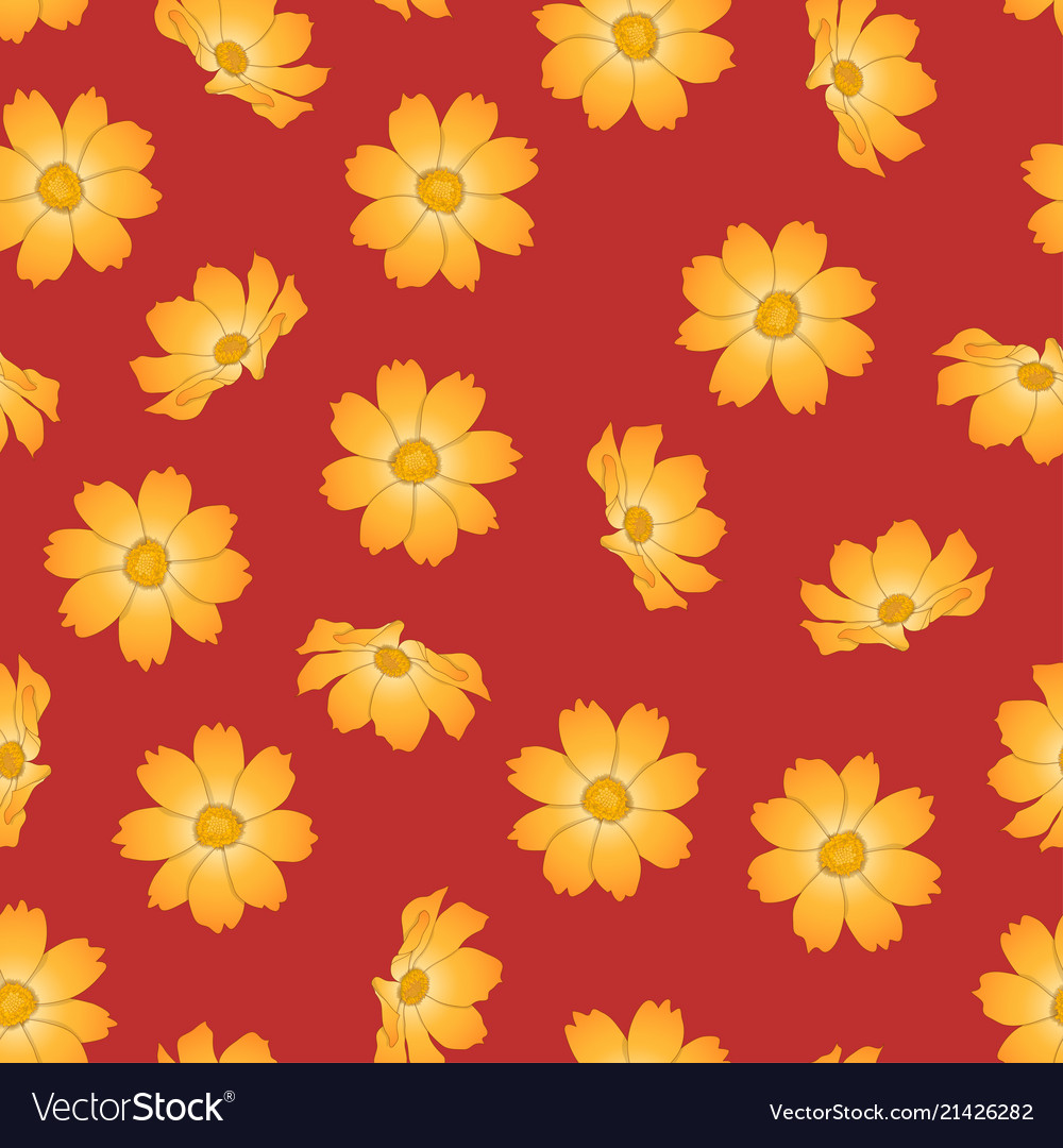 Orange yellow cosmos flower on red background vector image mightylinksfo