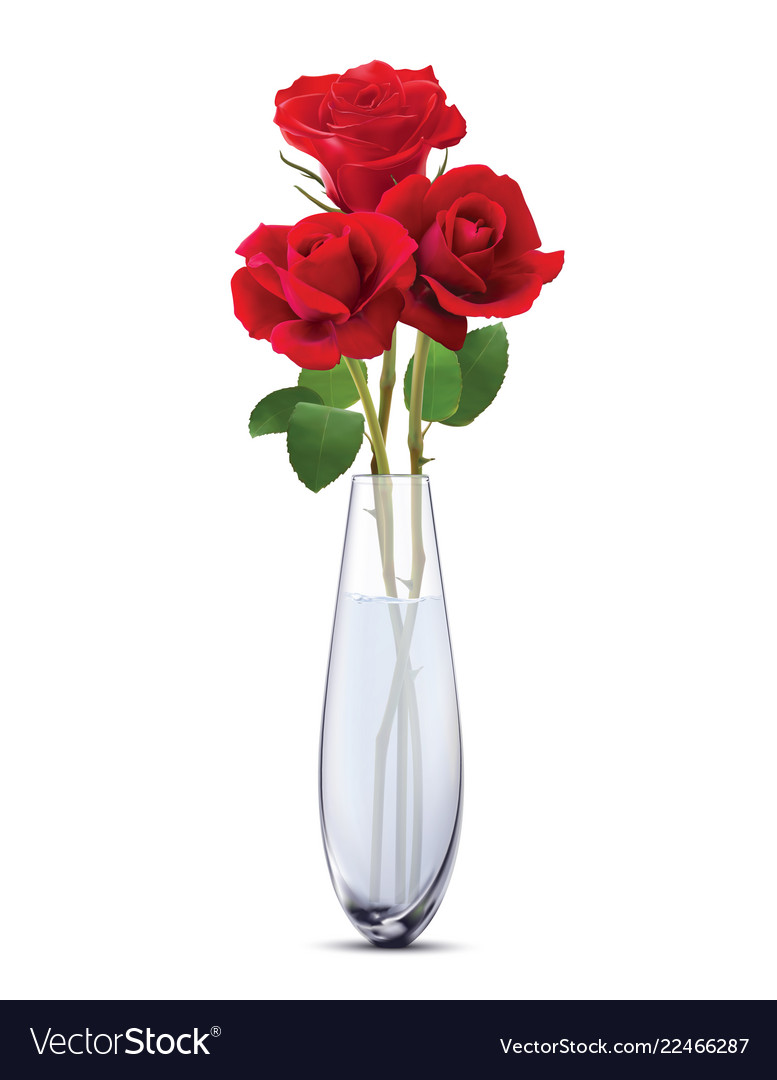 Roses In A Glass Vase Isolated Realistic 3d