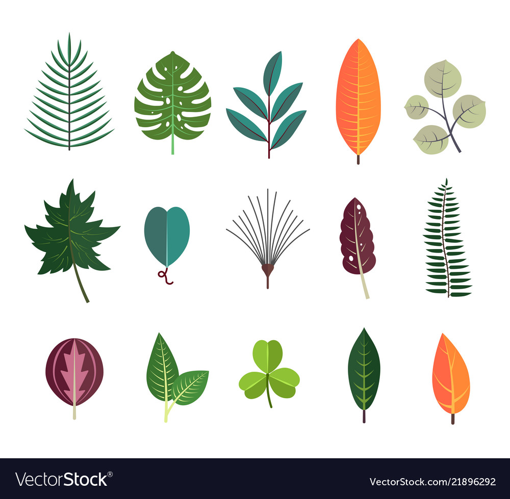 Green tropical leaves floral icons set autumn