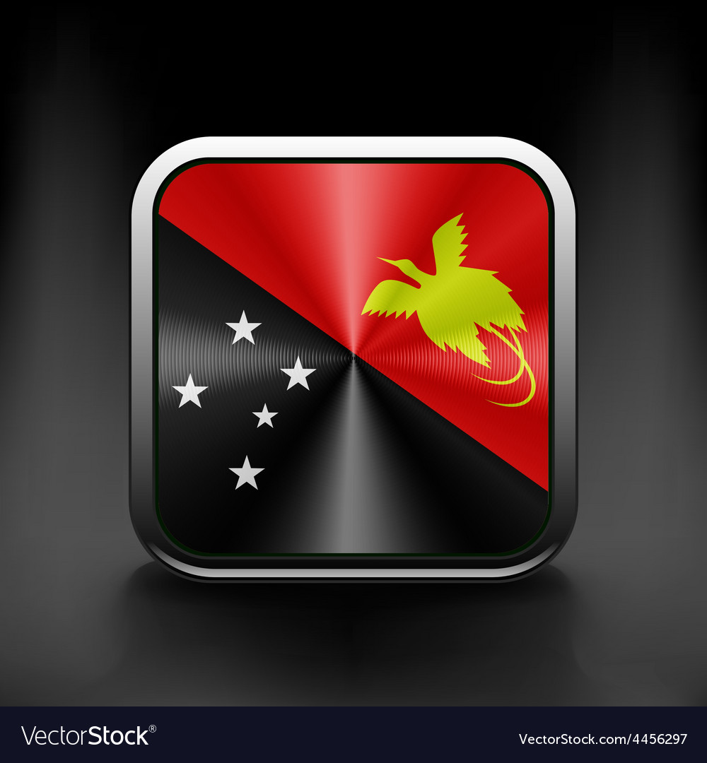 Papua New Guinea flag national travel icon country vector image