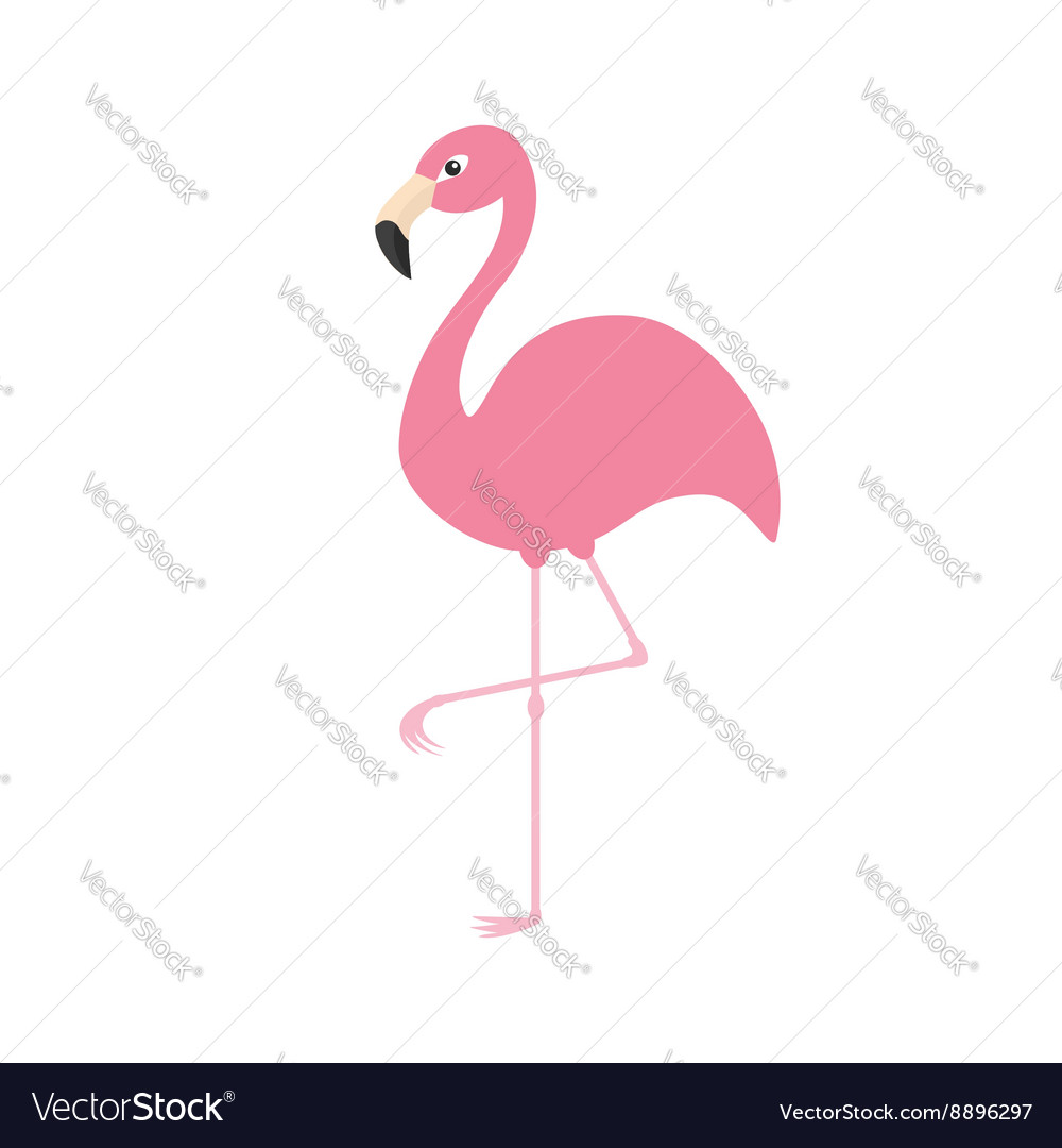 Pink flamingo on one leg Exotic tropical bird vector image