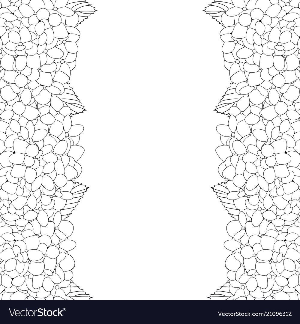 Hydrangea flower outline border