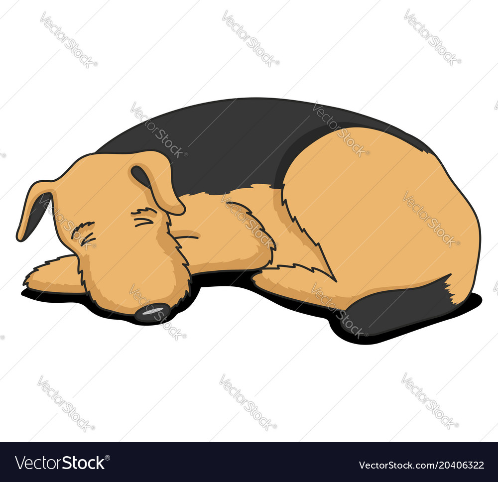 Cute sleeping dog vector image