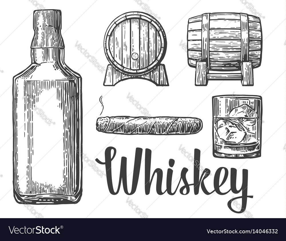Whiskey glass with ice cubes barrel bottle cigar vector image