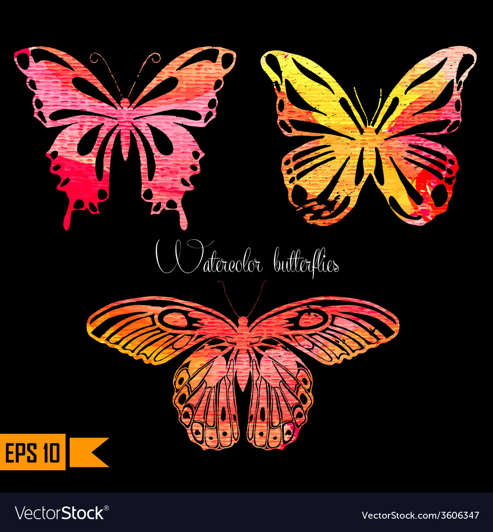 Amazing colorful set with butterflies painted vector image