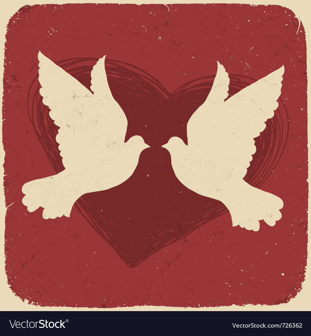 Two lovers doves vector image