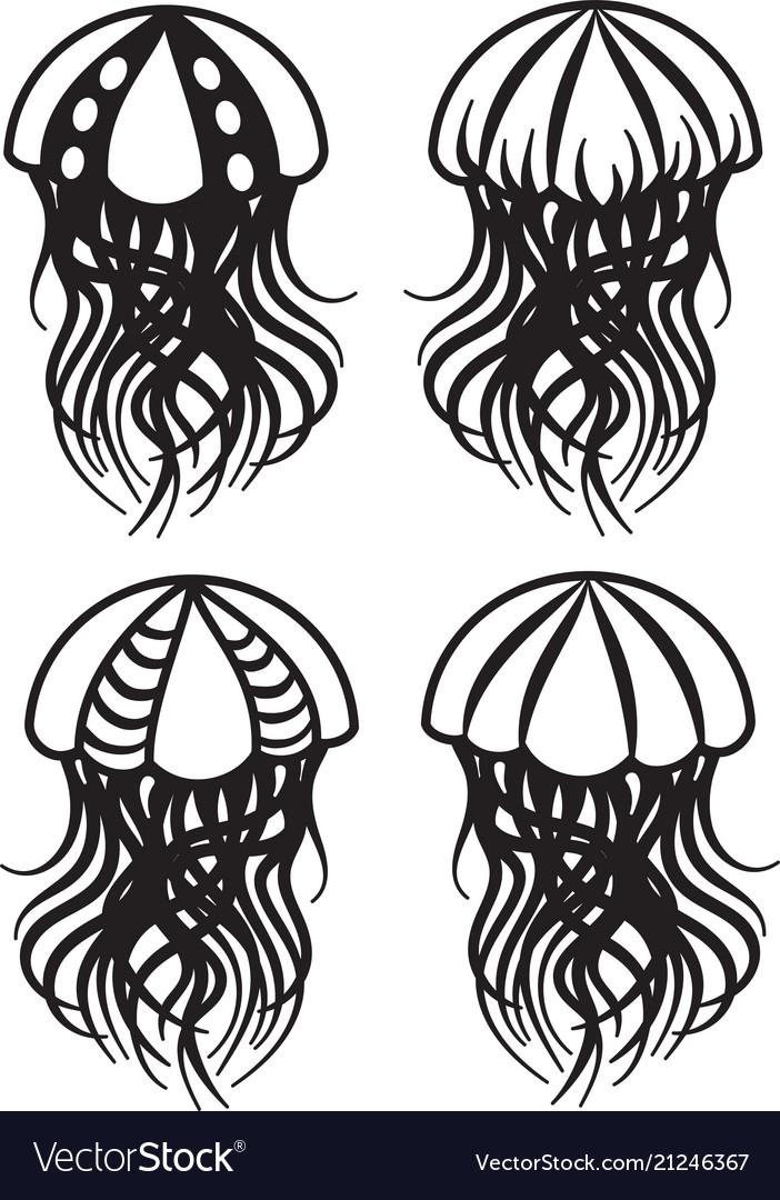 Set of drawings of jellyfish